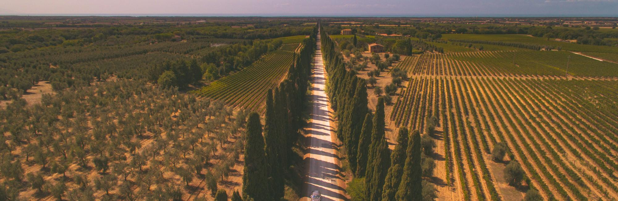Tuscany South – Cycling in Val d'Orcia